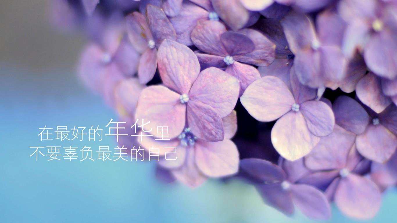高一化学高分速成精讲班(必修2)